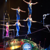 Save Up To 40% on Ringling Bros. and Barnum & Bailey Presents Built To Amaze! 11/1-12/1/13